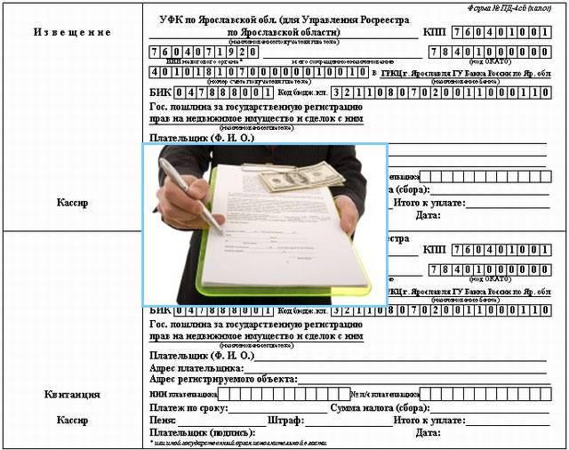 Прописка новорожденного ребенка – документы, сроки, штрафы