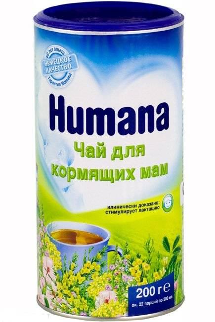 Чай для увеличения лактации: польза и выбор