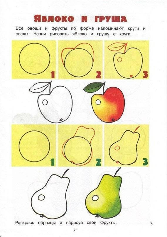 Конспект занятия по рисованию «любимые фрукты». воспитателям детских садов, школьным учителям и педагогам - маам.ру