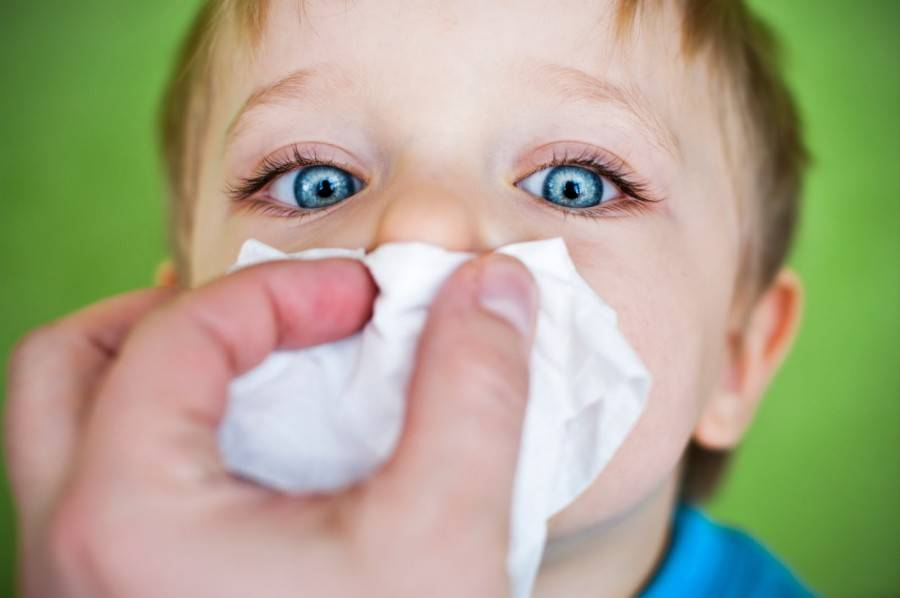 Аллергический ринит у детей. алгоритм лечения » библиотека врача