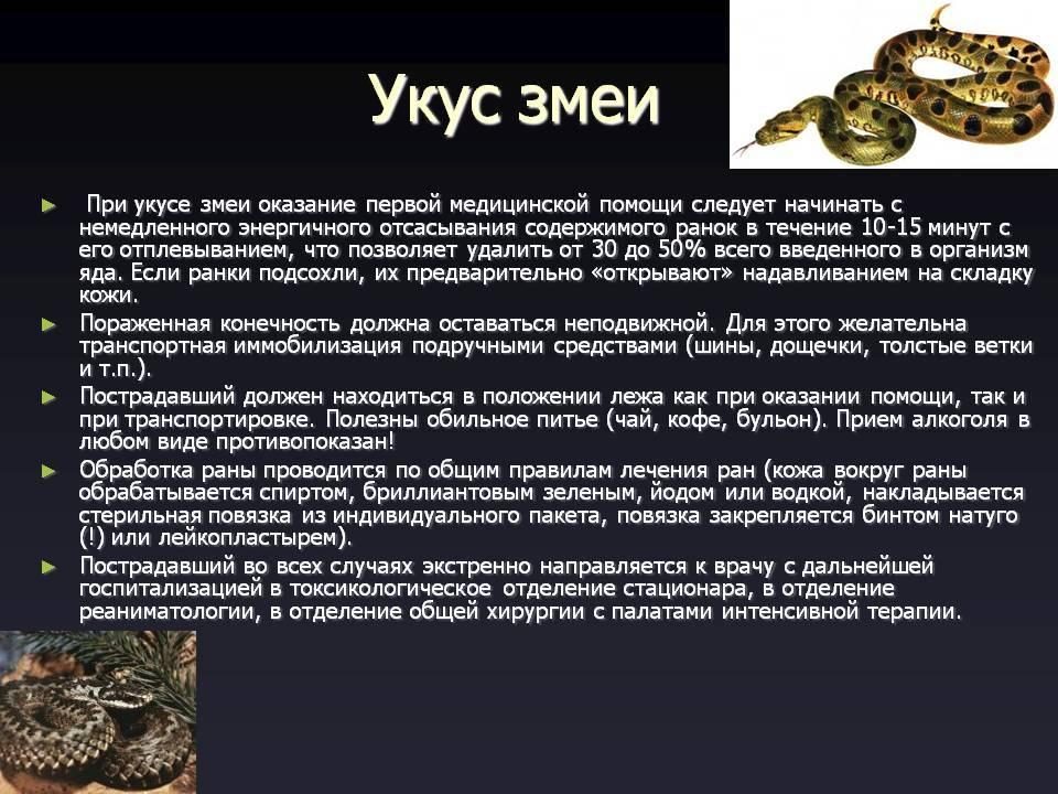 Первая помощь при укусах змей, животных и ядовитых насекомых