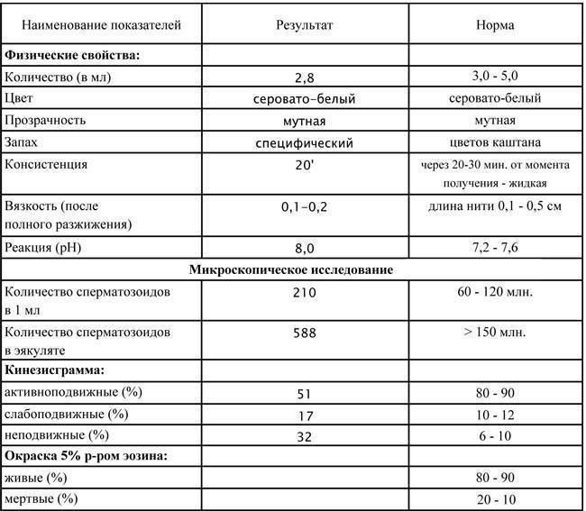 Морфология спермограммы: нормы и отклонения в спермограмме
