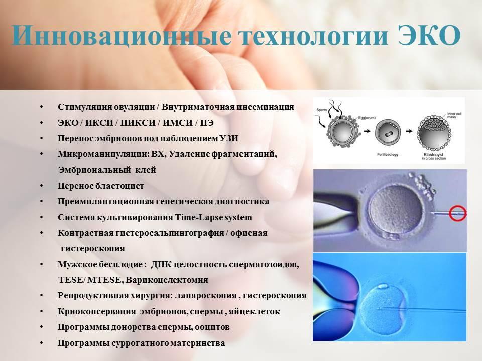 Противопоказания к эко: какие есть - статья репродуктивного центра «за рождение»