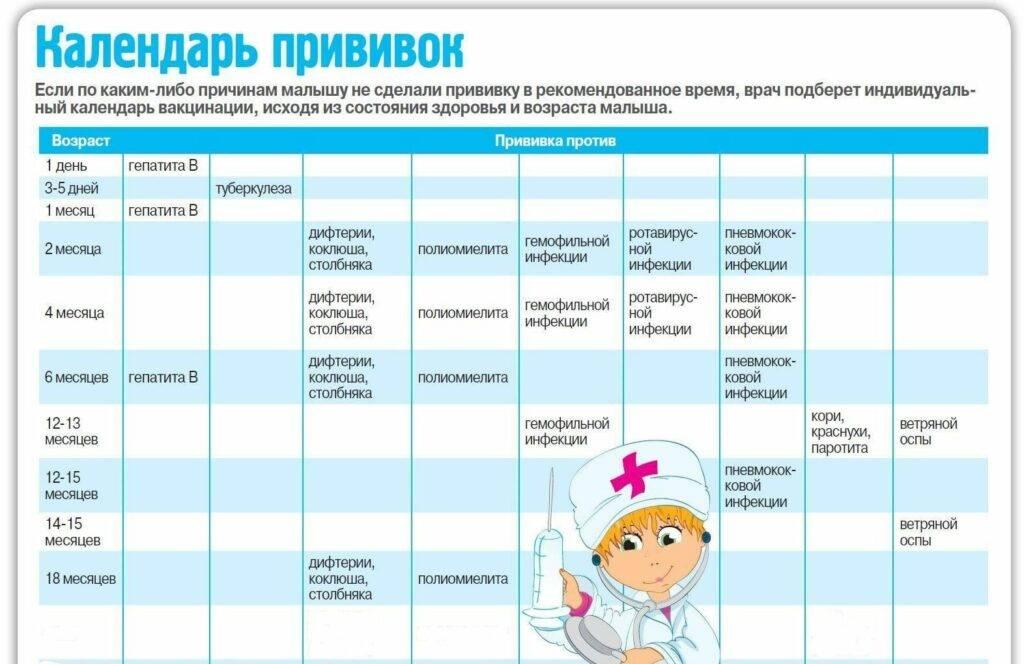 Какие прививки делают детям до года: таблица в россии 2020 по месяцам