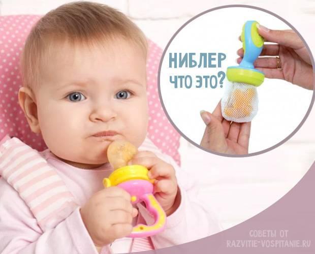 Сеточка для прикорма под названием ниблер - что это такое и как пользоваться подобным девайсом