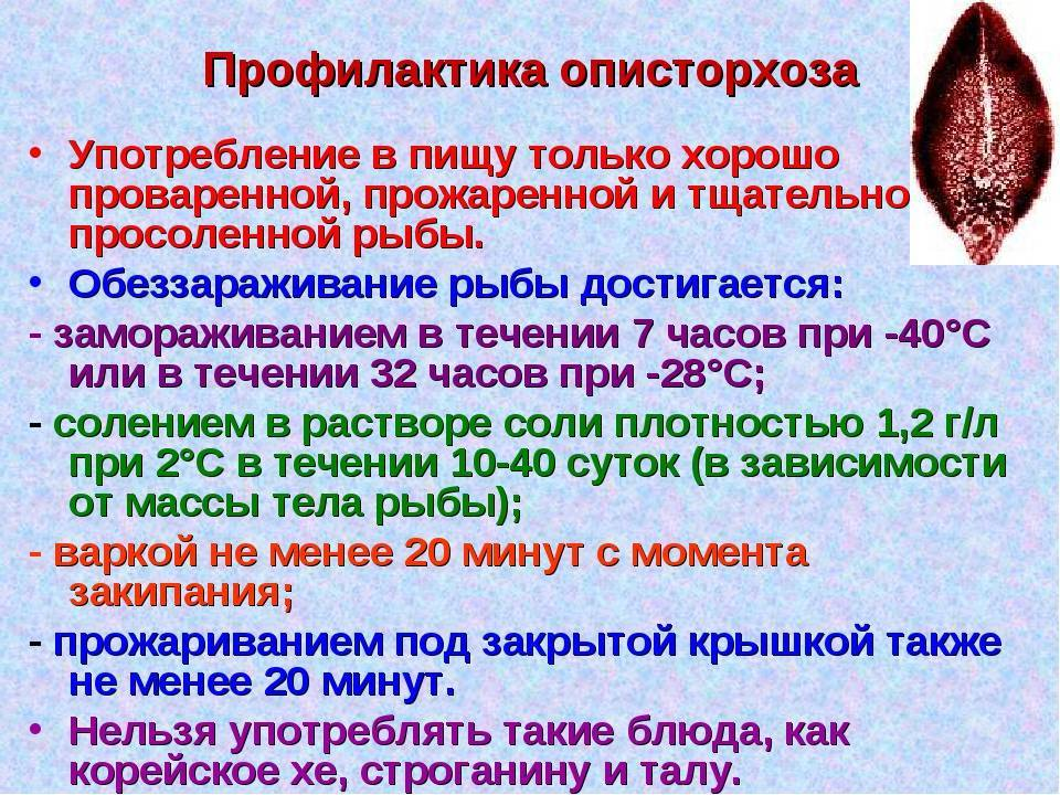 Детский описторхоз   - medside.ru