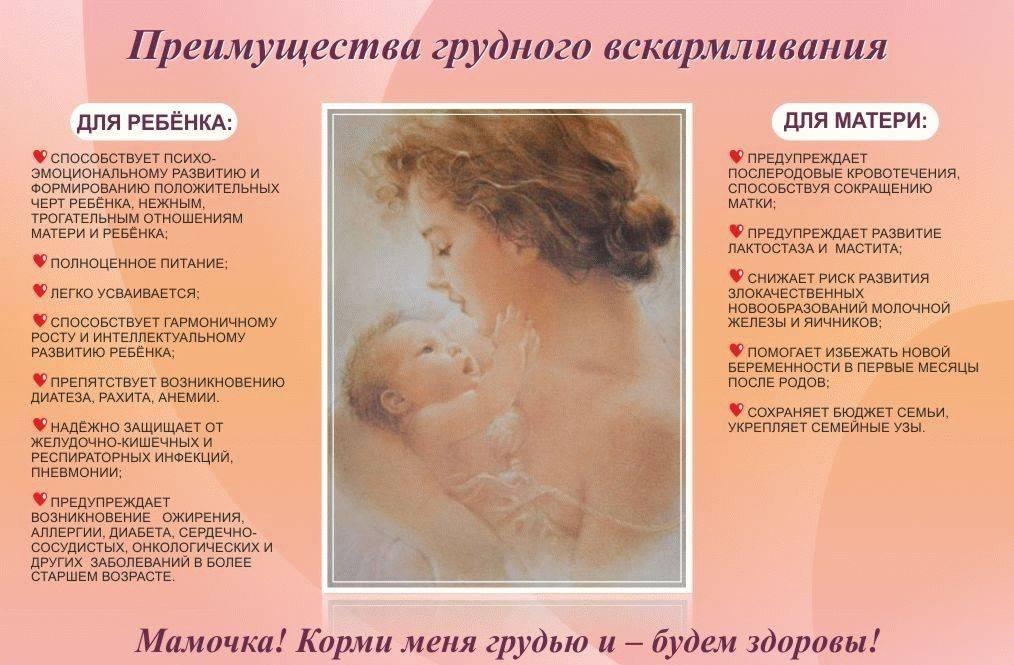 Как душа ребенка выбирает родителей до рождения за год