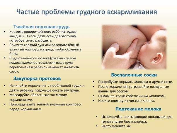 Правильный массаж груди при кормлении (видео)