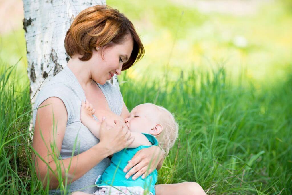 Можно ли употреблять чернику при грудном вскармливании и как ввести в рацион ребенка?