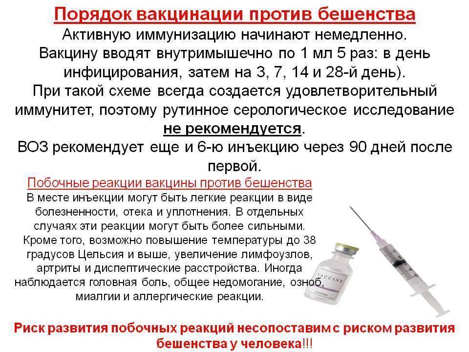 Температура после прививки акдс: реакция организма ребенка на вакцинацию