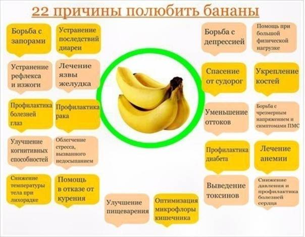 Бананы в первый месяц грудного вскармливания: можно ли кормящей маме в дни лактации фрукты, не навредят ли они при гв новорожденному, как он развивается в 6 недель?