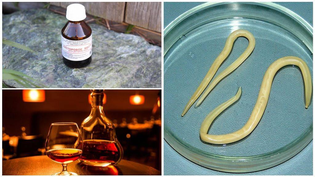 Ленточные черви, причины, симптомы и лечение