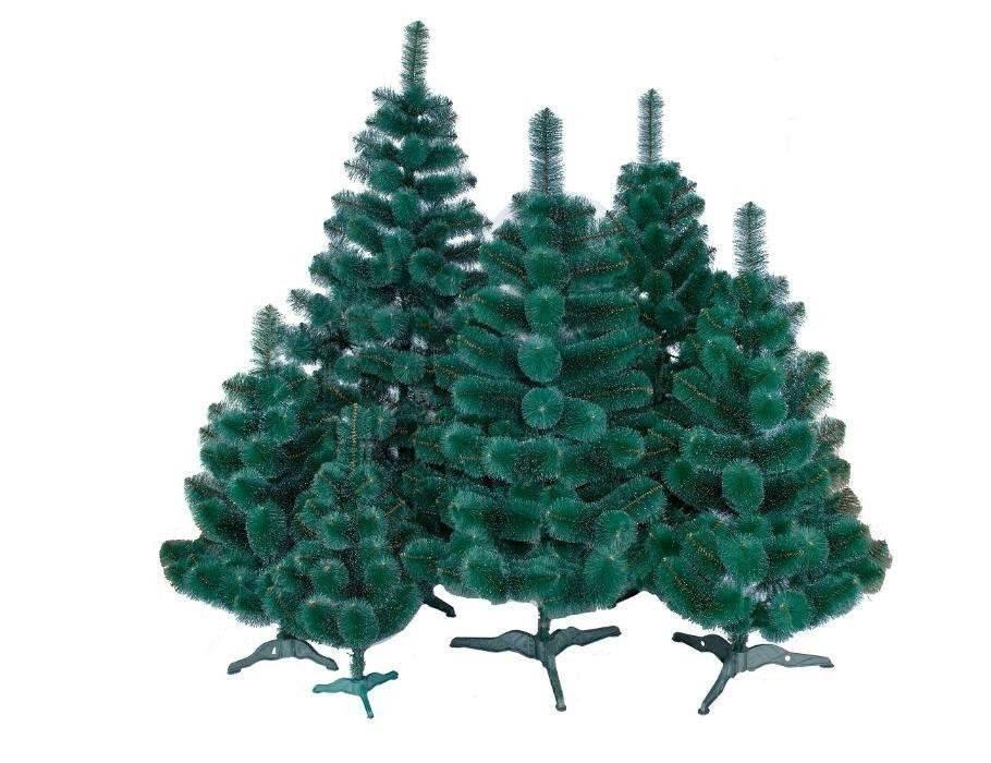 Как выбрать елку для дома на новый год, чтобы долго стояла, правила выбора