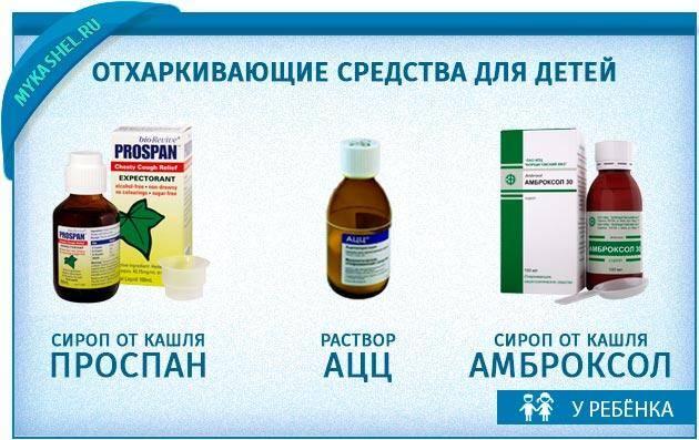 Обструктивный бронхит у детей: симптомы, диагностика и лечение   лдц здоровье