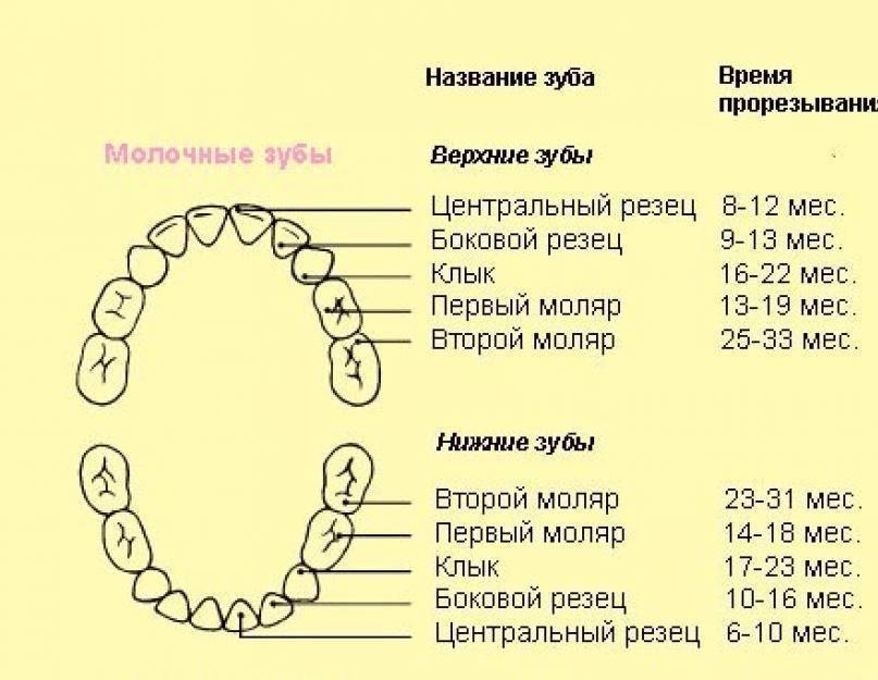 Народные средства помощи в период прорезывания зубов