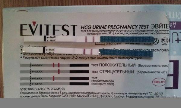 Как выглядит на фото тест на беременность с 2 полосками при положительном и отрицательном результате диагностики?