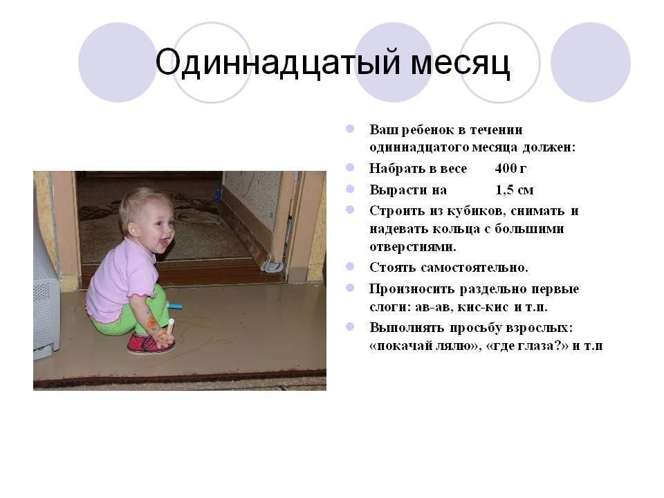 Что умеет и должен уметь ребенок в 11 месяцев