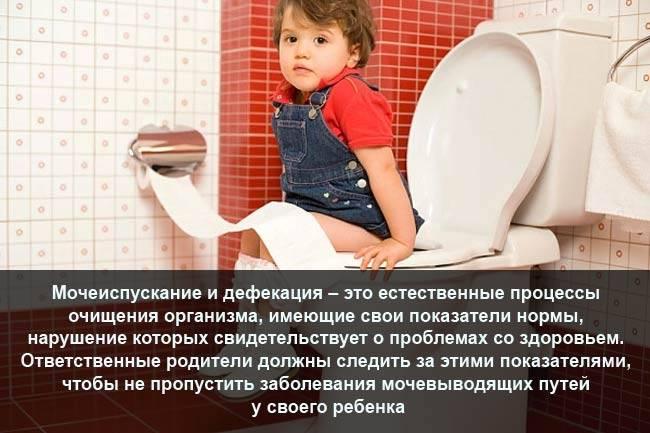 Частое мочеиспускание без боли у детей