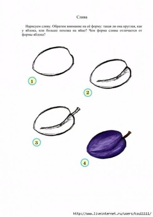 Как рисовать фруктами и овощами: 10 шагов