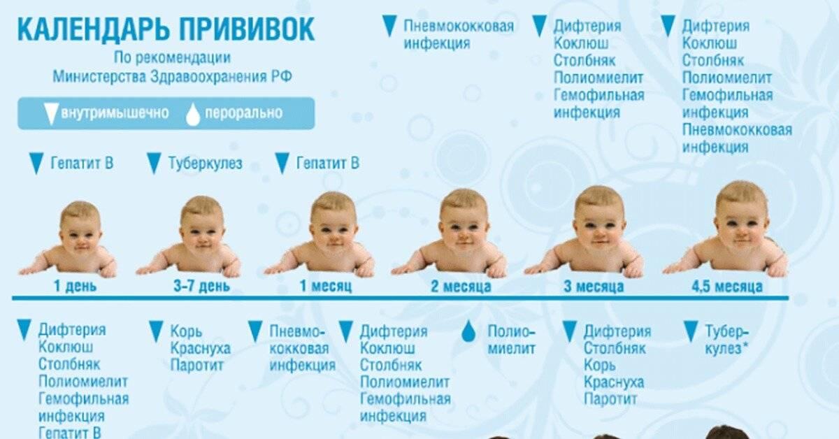 Вакцинация детей до года календарь прививок противопоказания