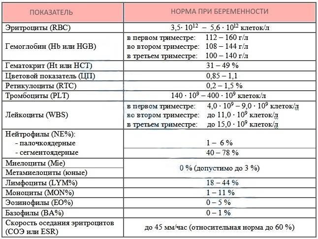 Гемостаз при беременности: особенности и нарушения