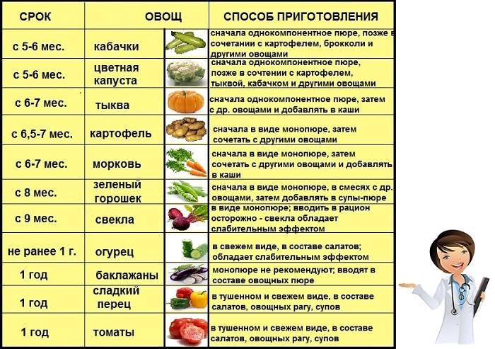 Всё о прикорме или 16 советов педиатра по введению первого прикорма