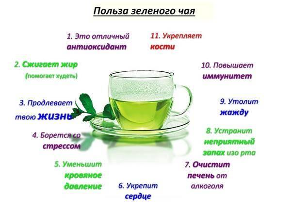 Чай - с какого возраста можно давать детям: сколько можно пить в день ребенку, комаровский