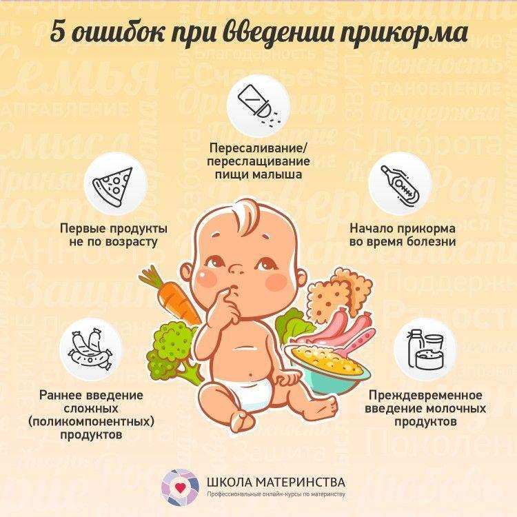 Кормление новорожденных в первые дни жизни - графики кормления смесью и грудью, мнение комаровского (видео)