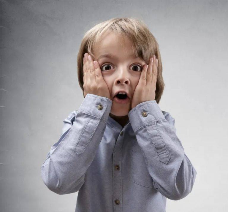 Почему животные боятся громких звуков?