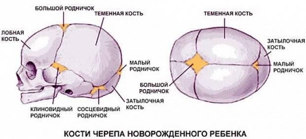 Пульсирует родничок у грудничка