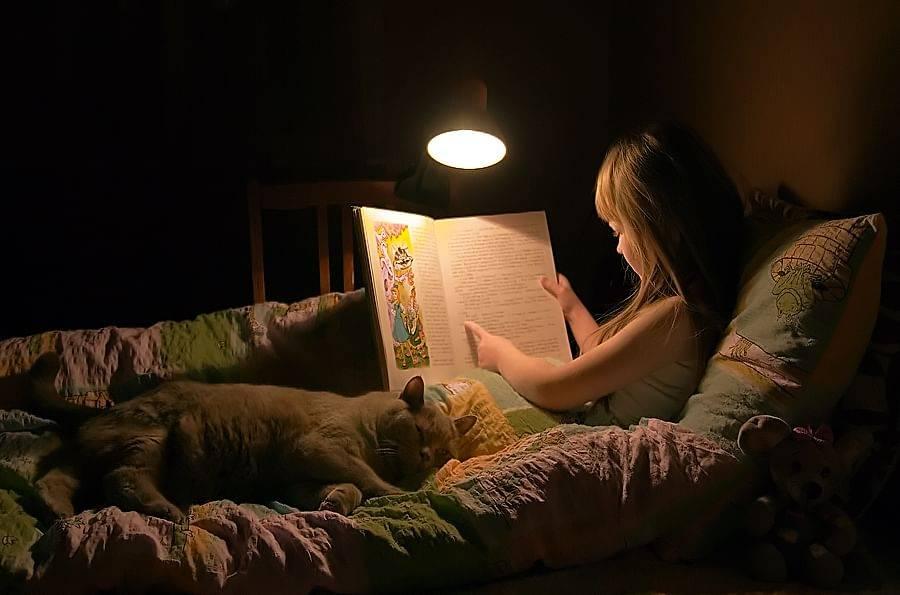 Сказка на ночь для малыша пример создания такой сказки и предметы которые потребуются