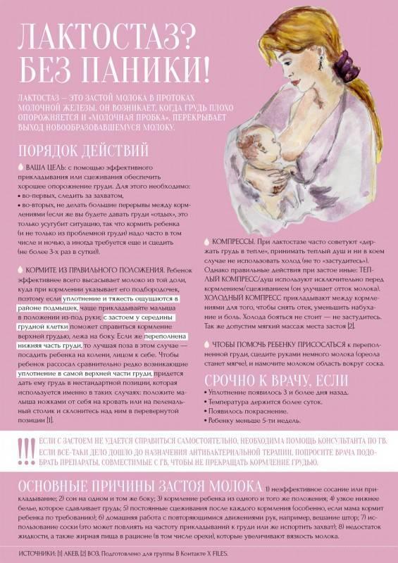 Лактостаз: симптомы, причины, лечение, последствия | москва
