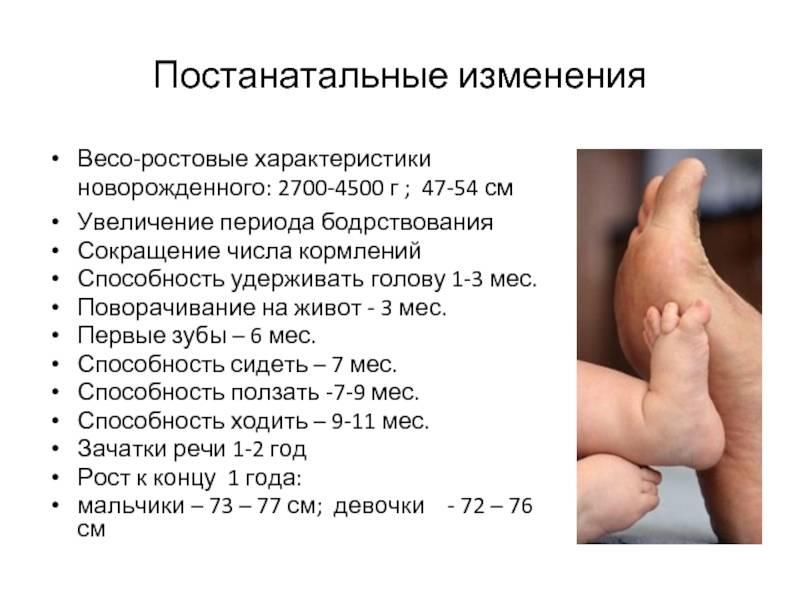 Черты характера новорожденных детей