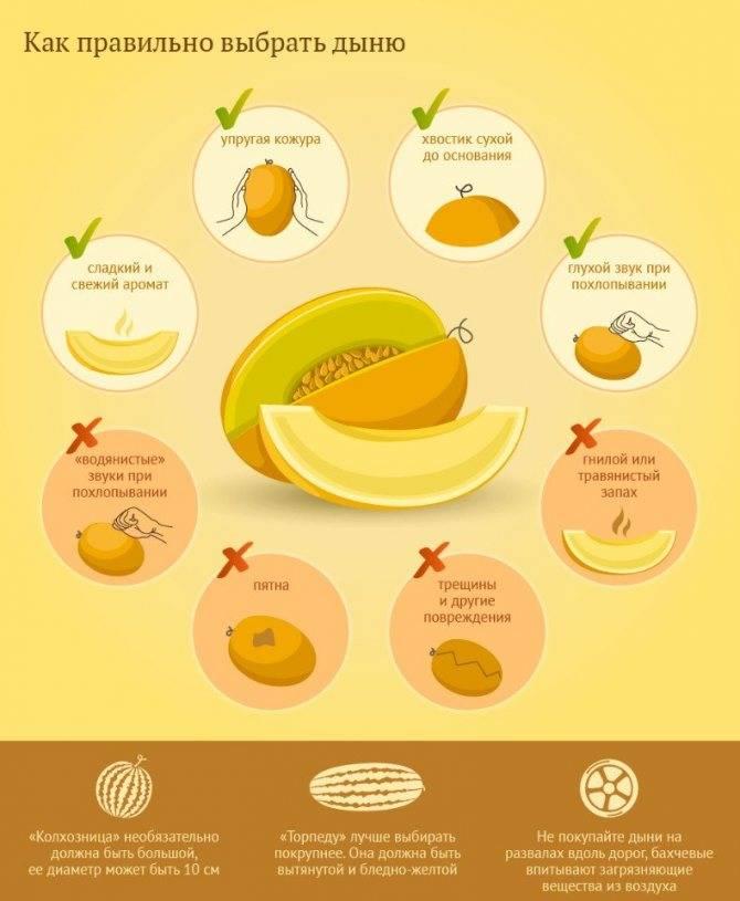 Лимон при грудном вскармливании: можно ли есть в 1, 2, 3, 4, 5, 6 месяцев после родов, полезные свойства, чай, вода, противопоказания