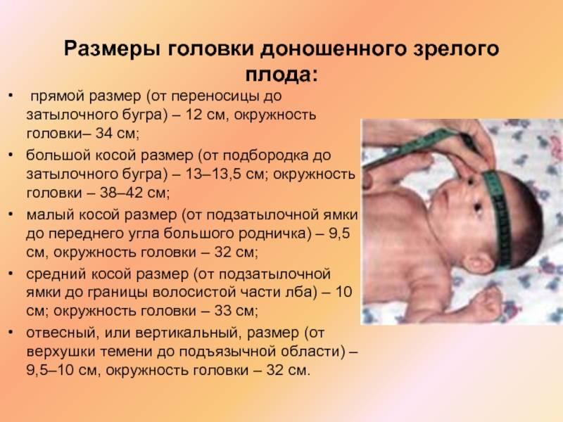 ᐉ с какого срока беременность считается доношенной? на каком сроке беременность считается доношенной - ➡ sp-kupavna.ru