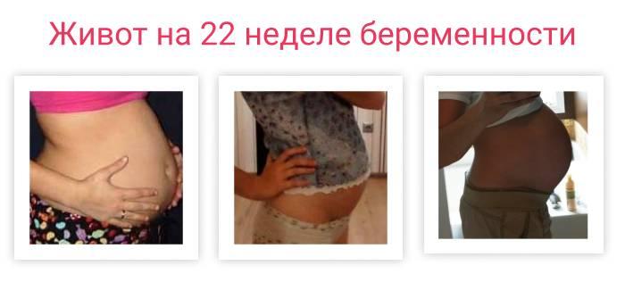Беременность — 22 неделя. набор веса, размер и развитие плода, ощущения