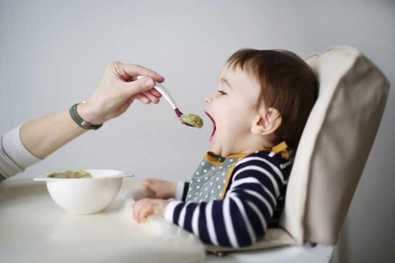 Меню, пожалуйста! почему ребенок не ест в детском саду? - страна мам
