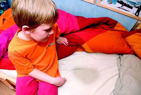 Лечение детского энуреза: советы родителям как лечить детское недержание