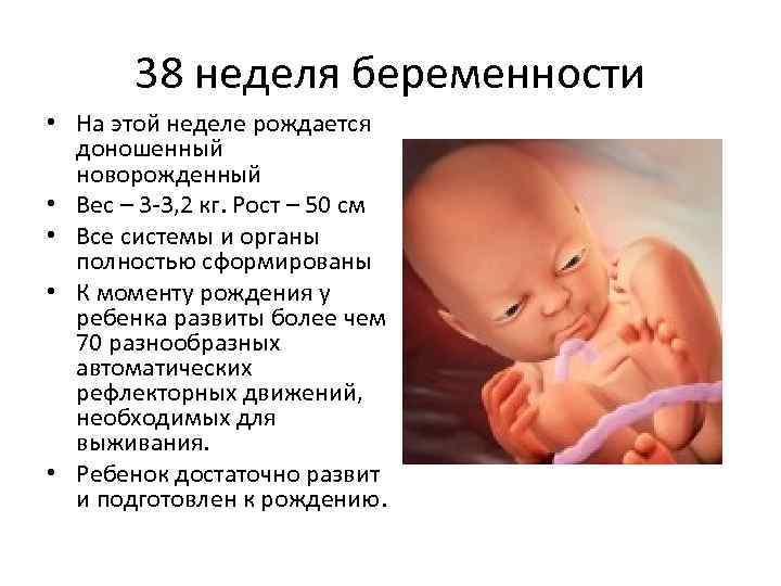 Калькулятор беременности и родов   университетская клиника