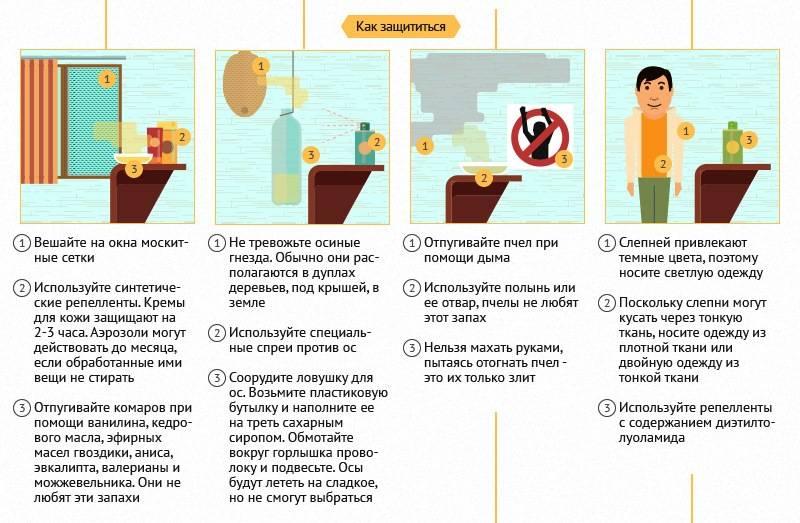 Укусы насекомых | курсы первой помощи