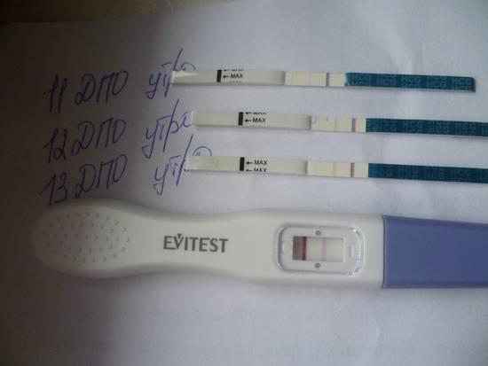 Чудо в животике: когда нужно идти к врачу при беременности в первый раз?