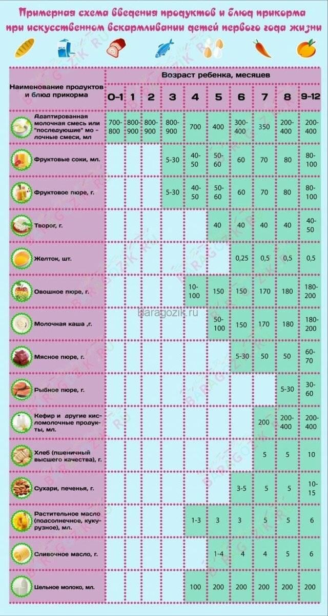 Питание ребенка от рождения до трех лет по месяцам. введение прикорма. питание грудного ребенка, питание ребенка в год. рацион питания ребенка.