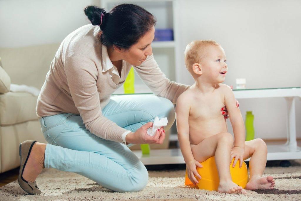 Как приучить ребенка к горшку? начинайте летом и никого не слушайте. многоразовые подгузники приучение к горшку