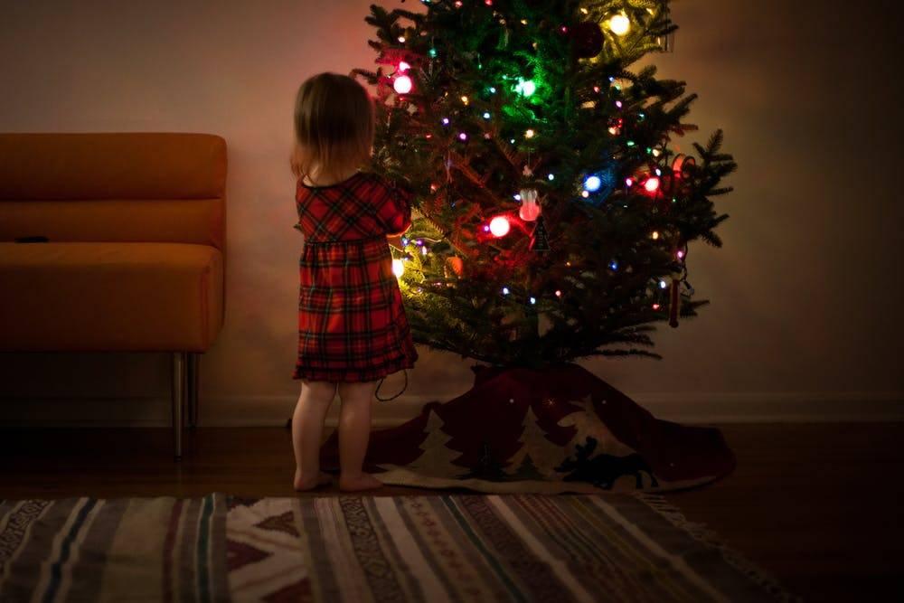 Новогодняя елка: история дерева и праздника, легенды, факты| wikidedmoroz.ru