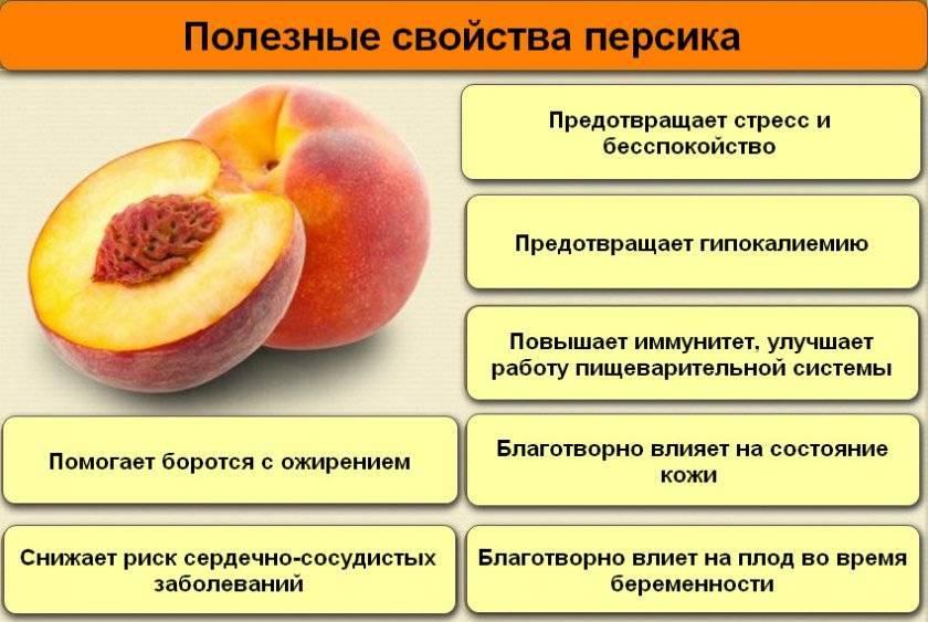 Персики при грудном вскармливании: можно ли есть в 1, 2, 3, 4, 5 месяцев, состав, противопоказания, рецепты