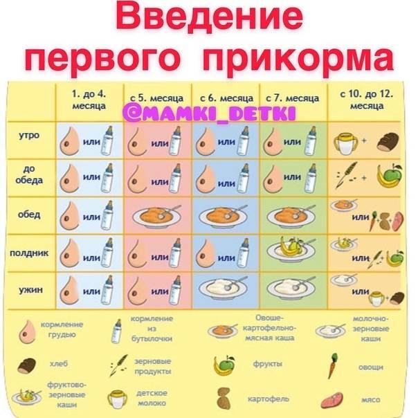 Первый прикорм для грудничков: с чего начинать, разрешенные продукты