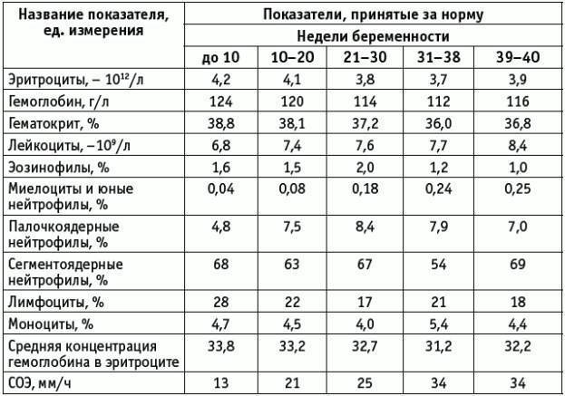 Общий анализ крови при беременности