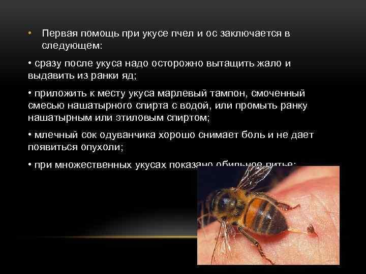 Аллергия на укусы насекомых.!