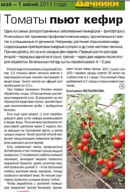 В каком возрасте в рацион ребенка можно вводить помидоры?