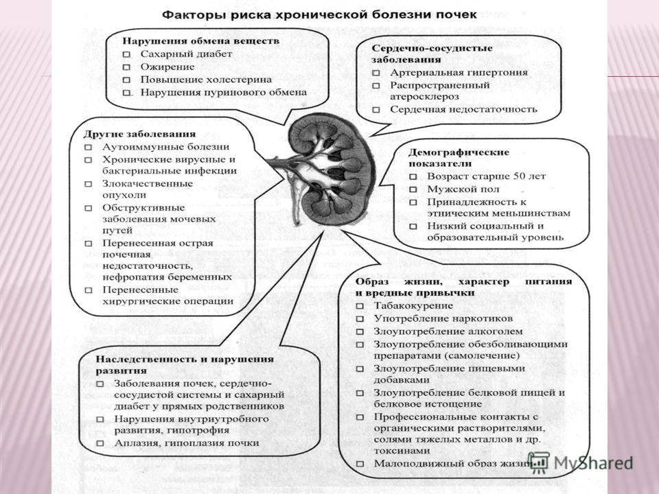 Причины гипоплазии почки у ребенка
